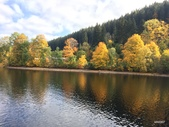 林德霍夫堡、新天鵝堡、米爾斯堡、波登湖畔、蒂蒂湖、巴登巴登、海德堡:蒂蒂湖畔景致