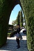 西班牙之旅─風車群、格蘭納達、哥多華、塞維亞:阿爾罕布拉宮庭園景觀