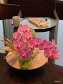 ibuki 李桑の創作懷石料理:桌飾