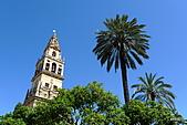 西班牙之旅─風車群、格蘭納達、哥多華、塞維亞:大清真寺景觀