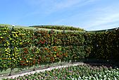 花博巡禮─圓山公園區:造型花牆
