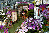 花博巡禮─圓山公園區:爭豔館景觀