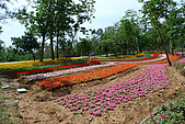 桐花祭:雙峰古道
