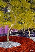 2011台灣花卉展:花之星光大道
