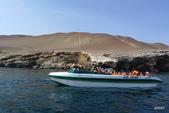 秘魯之旅﹝上﹞:Ballestas Islands巴雷斯塔斯島﹝鳥島生態﹞景致