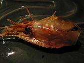 都鮨料亭:炸蝦頭