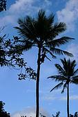 夏威夷─歐湖島:玻里尼西亞文化中心