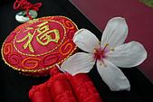 桐花祭:桐花之美