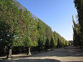 奧地利之旅:熊布倫宮後花園