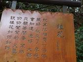 20140324三義木雕博物館:20140324三義木雕博物館 (110).JPG