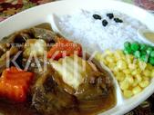 食品模型/西洋風味篇:咖哩牛肉飯