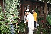 990915--402香藥草公園第二期綠化:99花園_20.JPG