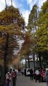 2020-12-28參訪桃園市「水患防災自主績優社區」樹林社區:line_1297808949248042.jpg
