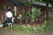 990915--402香藥草公園第二期綠化:99花園_36.JPG