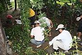 990915--402香藥草公園第二期綠化:99花園_38.JPG