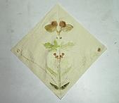 98-09-23日植物的拓染DIY:DSC_0018-1.jpg