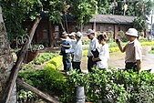 990915--402香藥草公園第二期綠化:香草園_16.JPG