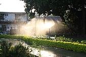 990915--402香藥草公園第二期綠化:香草園_36.JPG