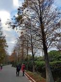 2020-12-28參訪桃園市「水患防災自主績優社區」樹林社區:1609147304141.jpg