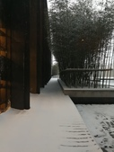 2018-01-25 到底是鵲橋還是雀巢呀?是空橋╮(▔▽▔)╭:IMG_20180125_170052.jpg