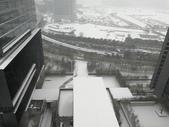2018-01-25 到底是鵲橋還是雀巢呀?是空橋╮(▔▽▔)╭:IMG_20180125_161357.jpg