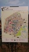 2017-02-26 南京梅花節:DSC_0349.JPG