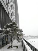 2018-01-25 到底是鵲橋還是雀巢呀?是空橋╮(▔▽▔)╭:IMG_20180125_155633.jpg