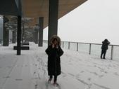 2018-01-25 到底是鵲橋還是雀巢呀?是空橋╮(▔▽▔)╭:IMG_20180125_164848.jpg