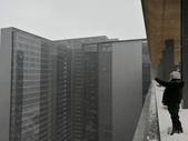 2018-01-25 到底是鵲橋還是雀巢呀?是空橋╮(▔▽▔)╭:IMG_20180125_161445.jpg