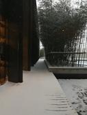 2018-01-25 到底是鵲橋還是雀巢呀?是空橋╮(▔▽▔)╭:IMG_20180125_170054.jpg