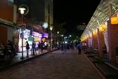 2018-11-03 礁溪大街(夜市&湯圍溝溫泉公園):DSC05910.JPG