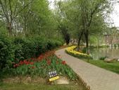 2018-04-16 南京綠博園(鬱金香花季):IMG_20180411_125154.jpg