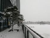 2018-01-25 到底是鵲橋還是雀巢呀?是空橋╮(▔▽▔)╭:IMG_20180125_155555.jpg