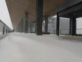 2018-01-25 到底是鵲橋還是雀巢呀?是空橋╮(▔▽▔)╭:IMG_20180125_162244.jpg