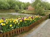 2018-04-16 南京綠博園(鬱金香花季):IMG_20180411_125559.jpg