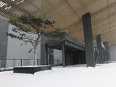 2018-01-25 到底是鵲橋還是雀巢呀?是空橋╮(▔▽▔)╭:IMG_20180125_161914.jpg
