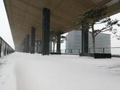 2018-01-25 到底是鵲橋還是雀巢呀?是空橋╮(▔▽▔)╭:IMG_20180125_161955.jpg