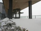 2018-01-25 到底是鵲橋還是雀巢呀?是空橋╮(▔▽▔)╭:IMG_20180125_161616.jpg