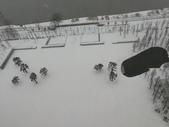 2018-01-25 到底是鵲橋還是雀巢呀?是空橋╮(▔▽▔)╭:IMG_20180125_161139.jpg