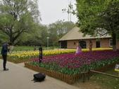 2018-04-16 南京綠博園(鬱金香花季):IMG_20180411_125433.jpg