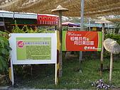 2008屏東熱帶農業博覽會:P3010116.JPG