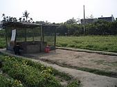2008屏東熱帶農業博覽會:P3010118.JPG