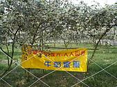 2008屏東熱帶農業博覽會:P3010102.JPG