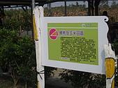 2008屏東熱帶農業博覽會:P3010107.JPG