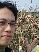 2008屏東熱帶農業博覽會:P3010109.JPG