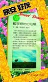 早安/晚安/鈴蘭小語 原創圖片:2018-03-06-22-18-18_1.jpg