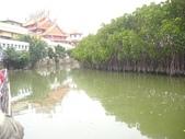 台江國家公園生態之旅:DSCI3242.JPG