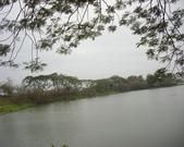 台南虎頭埤:DSCI3136.JPG