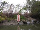 台江國家公園生態之旅:DSCI3255.JPG