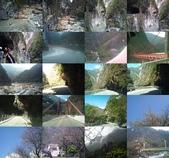 春節花東之旅:太魯閣2.jpg
